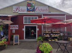 Packer Orchards In Hood River Serves Marionberry Cinnamon Rolls And We're Here For It Oregon Road Trip, Oregon Travel, Hood River Fruit Loop, Marionberry, Columbia River Gorge, Best Fruits, Cinnamon Rolls, Packers, Orchards
