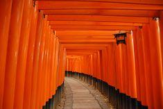 Fushimi-Inari-Taisha Shrine.   Perhaps the single most impressive sight in all of Kyoto, bar none.