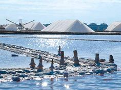 Torrevieja salt production boosted by Storm Gloria - The Leader Newspaper Torrevieja Spain, Murcia, Chemical Industry, Pathways, Picture Video, Beautiful Places, Salt, City, Newspaper