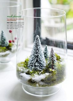 Turn a glass vase into a miniature winter wonderland. Too late for this Christmas but will do next year. Directions: Arrange sheet moss in the bottom of a vase and top with bottle brush trees, holly and ornaments of your choice. Dust with fake snow. Noel Christmas, Modern Christmas, All Things Christmas, Winter Christmas, Christmas Crafts, Christmas Ornaments, Miniature Christmas, Christmas Goodies, Vintage Christmas