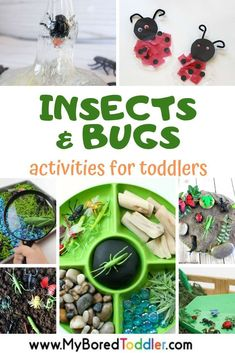 Insects and Bugs Activities for Toddlers My Bored Toddler Activities and crafts with insects and bugs for toddlers lots of fun spring themed bugs and insects activities. Insect Activities, Fun Activities For Toddlers, Spring Activities, Toddler Learning, Toddler Preschool, Preschool Activities, Toddler Play, Early Learning, Spring Toddler Crafts