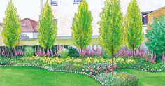 Ein breiter Garten mit großer Rasenfläche soll neu gestaltet werden, dabei soll ein ordentlicher Sichtschutz aufgestellt werden. Wir präsentieren Ihnen dazu zwei Gestaltungsideen mit Pflanzplänen zum herunterladen.
