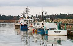 Waiting for the Season: Lobster boats line the dock waiting for start of lobster season at St. John, New Brunswick, Canada.  Photo by Art Dodd