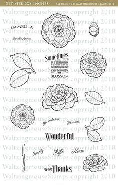 Camellia, waltzing mouse stamp set