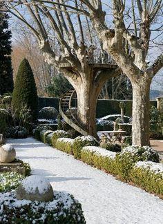 Topiary In The Winter Garden