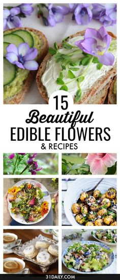 Brighten up spring and summer dishes for Afternoon Tea, showers, brunches and entertaining with these gorgeous edible flowers. Plus recipe ideas on how to use them. 15 Beautiful Edible Flowers to Brighten Your Dishes   31Daily.com