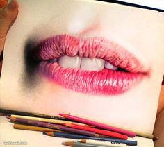 Stunning and Realistic Color Pencil | picz4pin