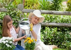 Sensory stimulation is key when it comes to Alzheimer's disease. Choose activities that help to stimulate the mind, body, and brain. Eco Garden, Garden Beds, Home And Garden, Activities For Dementia Patients, Agriculture Information, Alzheimers Awareness, Sensory Stimulation, Water Plants, Sensory Activities