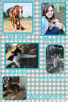 My pets!!!