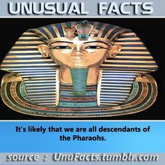 It's likely that we are all descendants of the Pharaohs.