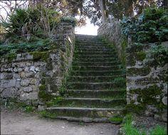 Ancient stairs at Le jardin des Plantes de Montpellier