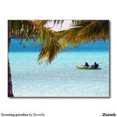 Crossing paradise postcard