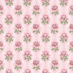 roses on pink.