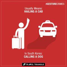 That sure is an unusual way to call your dog dont you think?#Travel #Korea #Destination #Traveler #Ola #Cabs #India #TravelTip #Mumbaikar #Delhi #Delhigram #Rajasthan #MumbaiLocal #Kolkata #Faridabad #Noida #Gurgaon