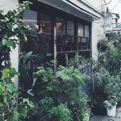 昔憧れて、神楽坂に通った理由  小路苑  これで、きょうの夕方時間はおしまい。  きのうの夕方時間編というのもありますので、帰りの新幹線の中を利用して、時々嵐のようにポストするわたしで、すみません。
