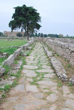 Paestum. Check out our post about about Southern Italy: http://travelwithmk.com