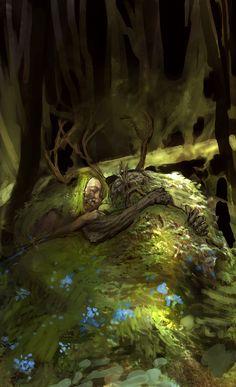 Narnia | Vance Kovacs