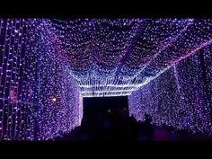 NEWS BUZAU -  tunel de lumini MJB 2 -  01 12 2016