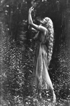 1917 photography