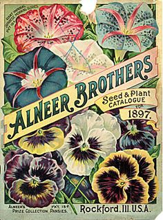 Alneer Brothers    Catalog Title:  Seed & Plant Catalogue for 1898 (1898)