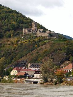 Castle Ruins paired with vineyards along the Danube - in the Wachau valley, Lower Austria