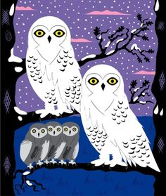Snowy Owls and Offspring by Oliver Lake. Kirigami, Owl Artwork, Owl Wallpaper, Owl Family, Snowy Owl, Cute Owl, Art Lessons, Art Projects, Sewing Projects