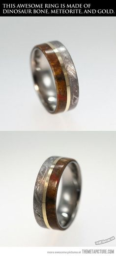 So cool! Meteorite, dinosaur bone, and gold. I don't think I would ever wear it because I would be too scared to lose it!