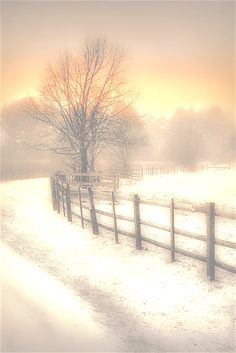 Winter *❄~*. Wishes & Dreams .*~❄* Winter's Warmth by Jenny Woodward