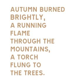 Autumn burned brightly, a running flame through the mountains, a torch flung to the trees. Autumn Day, Autumn Leaves, Autumn Poem, Autumn Harvest, Hello Autumn, Shining Tears, Lovely Smile, Happy Fall Y'all, Fall Season