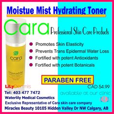 Hydrating Toner, Skin Elasticity, Active Ingredient, Mists, Clinic, Medical, Skin Care, Cosmetics, Products