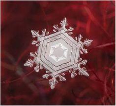 雪の結晶18