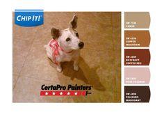 CertaPro Painters Dog Days of Summer Contest on Facebook!  http://www.facebook.com/certapropaintersusa