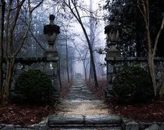 Image result for gothic houses in fog