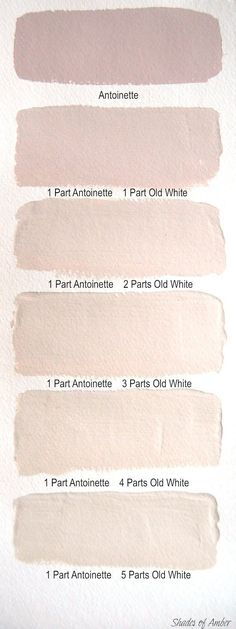 Blush wall colors #paint #homedecor #interiordesign