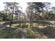 "Projekt ""Hostel Wadi in Hoge Rielen""...competitionline"