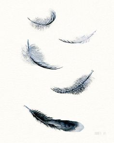 Black and white | Feather art print - 5 soaring downs and feathers | Art print black and white feather watercolor painting by Annemette Klit. 5