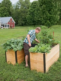 We have all the Raised Beds you need to grow the most productive and impressive garden possible. Raised Garden Beds are the answer and RaisedBeds.com is the solution!