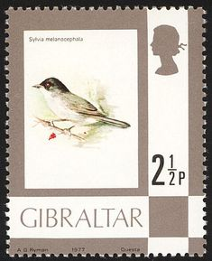 Sardinian Warbler stamps - mainly images - gallery format
