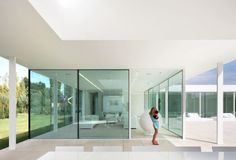Villa V in T: Steel framed glazing