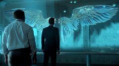 lucyfer skrzydła - Szukaj w Google