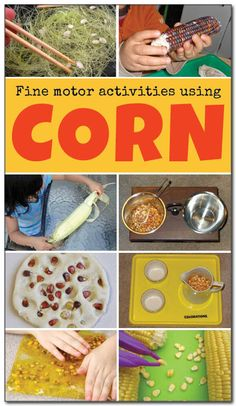 8 corn fine motor activities to try with your kids this fall. This list of fine motor activities using corn is diverse and involves using many different parts of the corn plant. I really want to try #1! || Gift of Curiosity