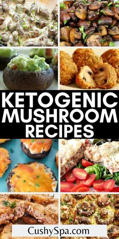 If you are a mushroom lover and are following a ketogenic diet you will love these super tasty keto mushroom recipes for your low carb meal plan. You can burn more fat in ketosis while enjoying more delicious keto mushroom meals. #Keto #LowCarb Mushroom Meals, Vegan Mushroom Soup, Mushroom Dish, Mushroom Recipes, Baked Mushrooms, Creamed Mushrooms, Stuffed Mushrooms, Low Carb Meal Plan, Low Carb Diet