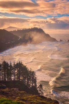 Oregon Coast Mist - Near Cape Meares at sunrise. Image by Darren White Photography - Fine Art Landscapes.