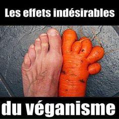 Special vegan !!!!  - Page 9 67da11e2dd6efa48ac759c2a58f8da61--vegan-humour