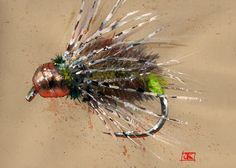 The Driftless Caddis - A pattern by Jon Uhlenhop at Chicago Fly Fishing Outfitters.