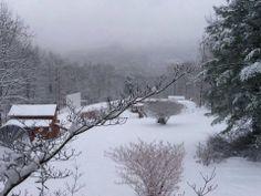Snowy scene from viewer Annette Franke #whsvsnow