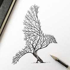 Love this drawing by @alfredbasha #drawing #design #branches #contrast