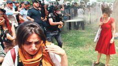 Taksim'de ki Gezi Parkı'nda ağaçların sökülüp araziye AVM yapılacak olmasını protesto eden insanların toplanması ve sadece buna karşı koyulması üzerine yapılan bir eylemdi. http://sihirliblog.com/direngeziparki-gezi-parkina-polis-mudahalesi/