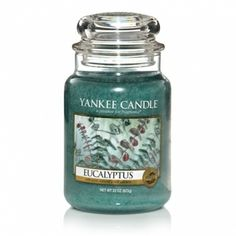 Eucalyptus: Yankee Candle Company Large Jar Candles: A clean and bracing scent to awaken the senses.