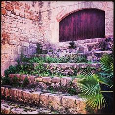 Escales per a gegants #OlesadeBonesvalls #Penedes